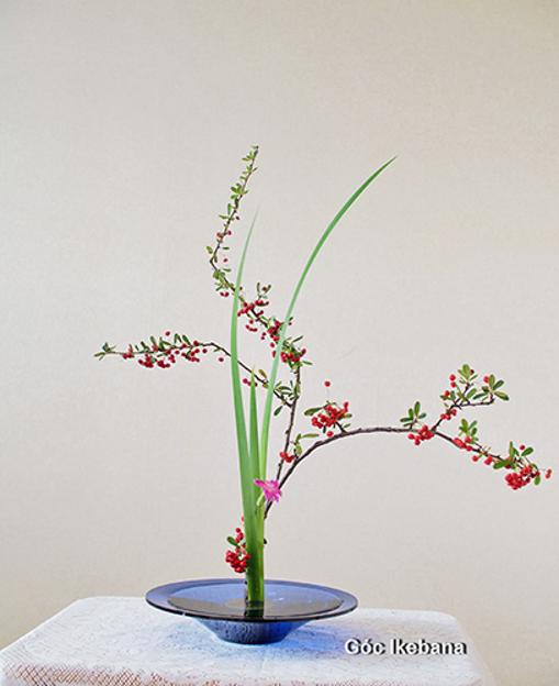 Triển lãm Nghệ thuật cắm hoa truyền thống Nhật Bản Ikebana tại Hà Nội